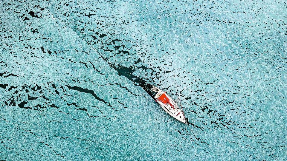 Wie ein Pfeil bahnt sich Delphines Boot einen Weg durch die Bucht von Trygghamna. Sie muss dabei Schollen von massivem Eis unterscheiden – sonst steckt das Boot fest.