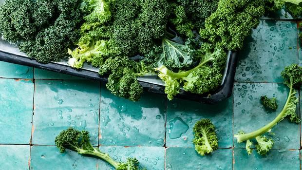 Frischer Grünkohl wird kalt gewaschen. Das macht seine Blätter noch einmal prall und knackig