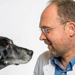Tierliebe: Über die manchmal tödliche Liebe des Menschen zu Haustieren