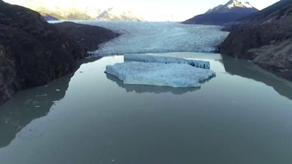 """Chile: Eisberge lösen sich vom """"Grauen Gletscher"""" – Wissenschaftler zeigen sich besorgt"""
