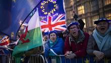 Brexit Gegner protestieren vor den Houses of Parliament in London