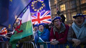 Brexit Gegner protestieren vor den Houses of Parliament in London