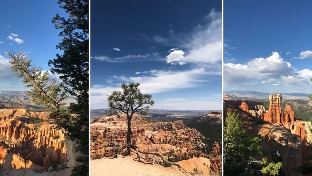 USA-Roadtrip: Der Bryce Canyon in Utah