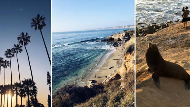 USA-Roadtrip: Der kalifornische Küstenort La Jolla