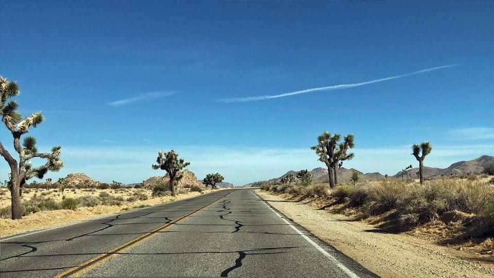 USA-Roadtrip: Auf einem USA-Roadtrip entdeckst du die unterschiedlichsten Landschaften