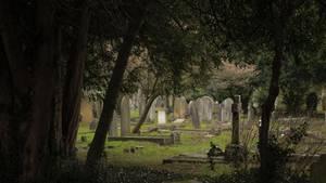 Grabsteine auf einem Friedhof