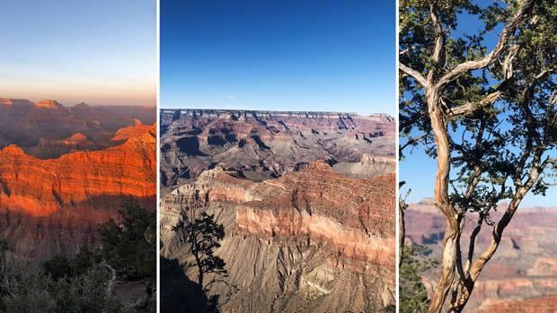 USA-Roadtrip: Am Grand Canyon verschlägt es dirden Atem
