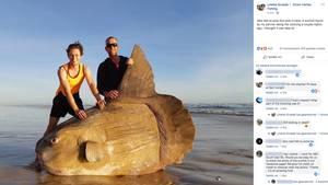Hunter und Steven Jones mit einem riesigen Mondfisch