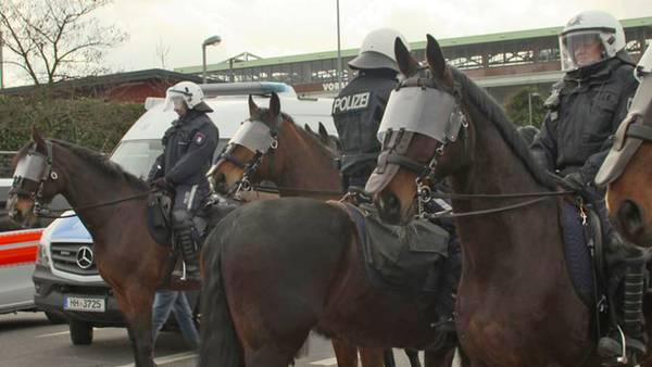 Hamburgs Reiterstaffel der Polizei:stern TV hat das Team um Dörte Thies begleitet.