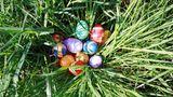 Ostereier suchen: 58 Prozent der Befragten suchen und verstecken Ostereier.