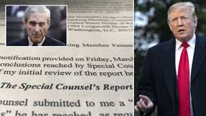 Trump entlastet? Mueller-Bericht: Keine wissentliche Verschwörung mit Russland