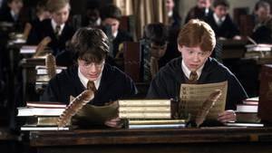 "Diese ""Harry Potter""-Geschenke lassen Fan-Herzen höherschlagen"