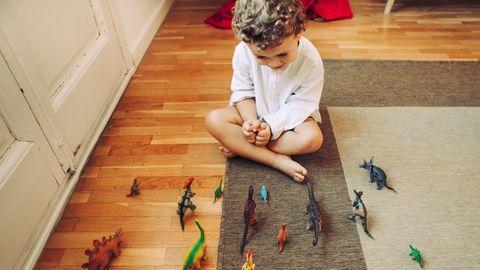 Ein Junge sitzt vor seiner Dinosaurier-Sammling