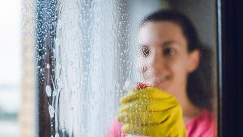 Mit dem Sauger macht Fensterputzen mehr Spaß, sagen die Tester.