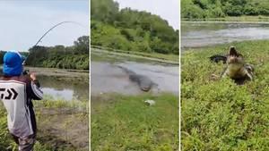 Ein Angler und ein Krokodil kämpfen um den Fisch