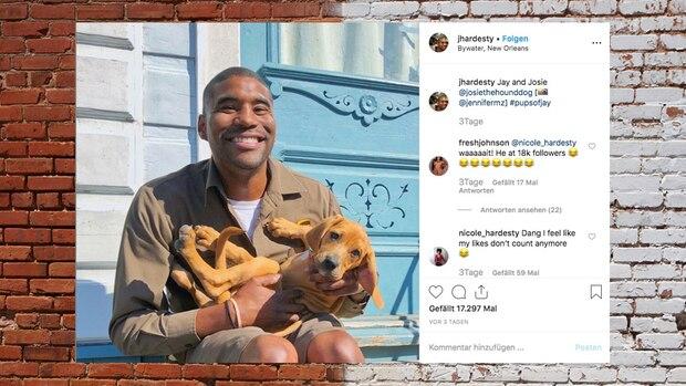 Instagram: Diesen Paketboten liebe alle Hunde