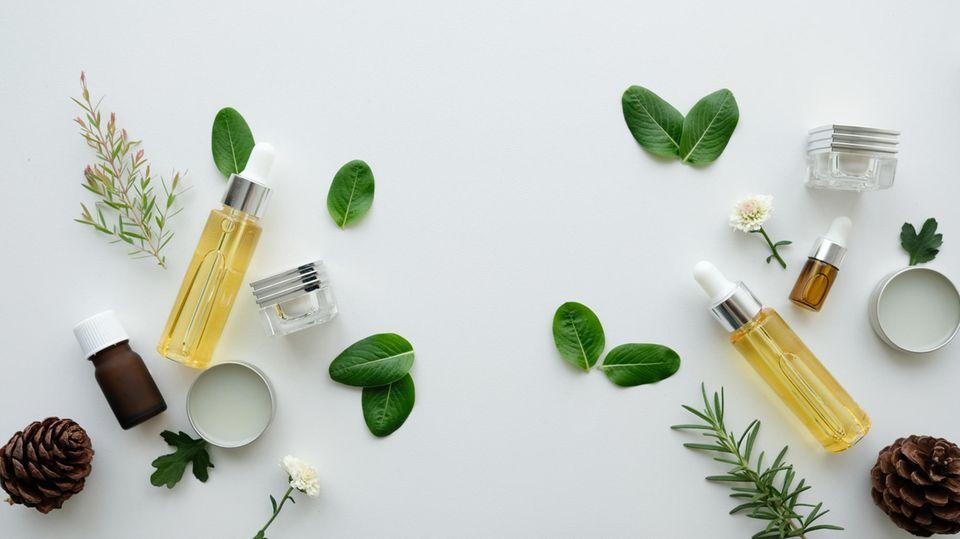 Kosmetikprodukte, Blätter, Blüten und Tannenzapfen auf Tisch ausgebreitet