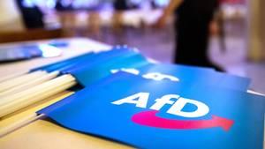 Die AfD verliert im Bundestrend leicht