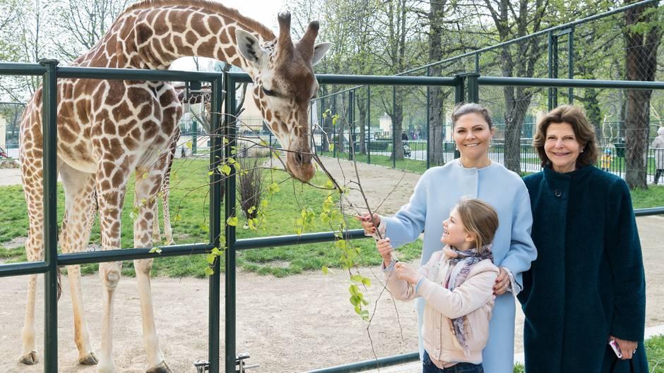 Königin Silvia, Kronprinzessin Victoria und Prinzessin Estelle im Wiener Zoo