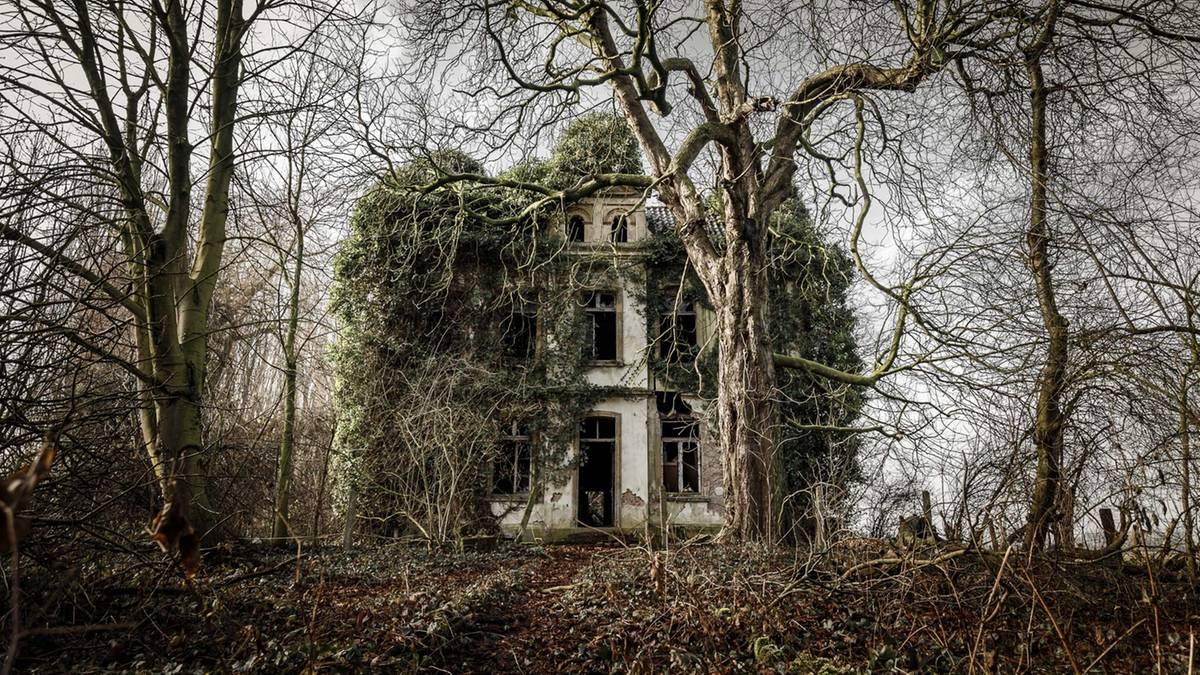 Schöner Verfall: Lost Places: Diese Orte hat sich die Natur zurückgeholt