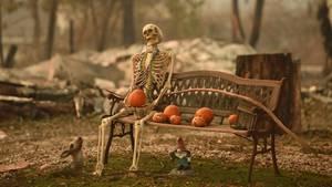 Der neue Brexit-Termin ist Halloween. Aber auch schon die Zeit davorkönnte mit gruseligenEreignissen nur so gefüllt sein. Was passiert beispielsweise bei der Europawahl und in der Zeit danach?