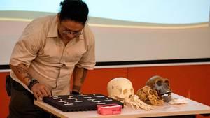 Klein und krumm: Die Forscherin Armand Salvador präsentiert die Knochenüberrestedes Homo luzonnsis in Manila