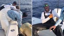 Hochseeangler fangen Schwertfisch