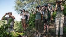 Die lustigsten Vögel im ganzen Busch: Ranger-Nachwuchs auf Spähmission. Reporterin Nele späht ganz vorn.