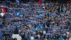 Fans des HSV