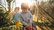 Diese Ostergeschenke machen den Kleinen eine Freude