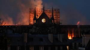 Der Brand der Notre Dame hat weltweit Entsetzten ausgelöst