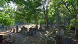Jüdischer Friedhof  An der Okopowa-Straße liegt einer der größten jüdischen Friedhöfe Europas mit 150.000 erhaltenen Gräbern. Seit dem frühen 19. Jahrhundert hatten hier Menschen ihre letzte Ruhestätte gefunden. Das 33 Hektar umfassende Areal gehört zu den wenigen Spuren der einst reichen jüdischen Kultur Warschaus. Tram:Cmentarz Żydowski  Infos:http://warszawa.jewish.org.pl/pl/dla-zwiedzajacych/warszawa/okopowa/