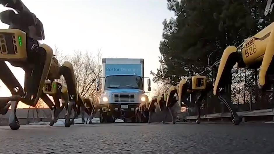 Robotik-Spot: Geräusche wie aus einem Sci-Fi-Film: Robo-Hunde ziehen Lastwagen