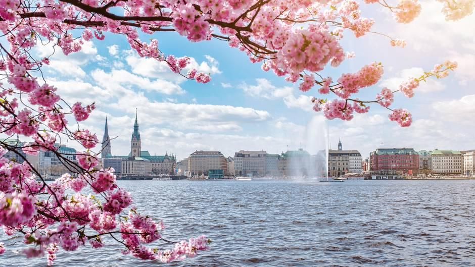 Sonnig und warm: Grillen an Ostern? So herrlich wird das Wetter über die Feiertage