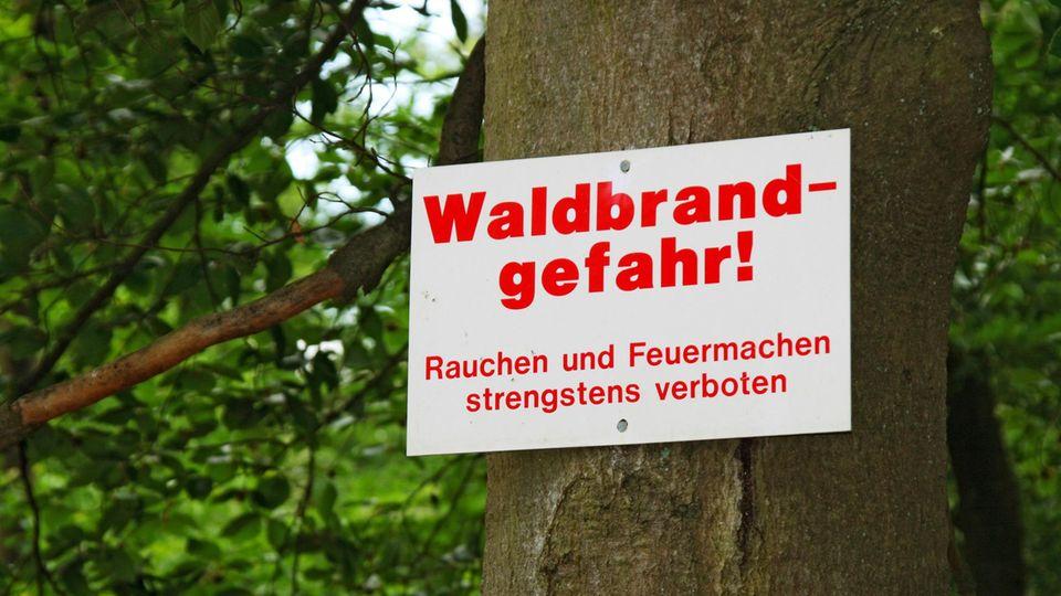 Osterfeuer Waldbrand
