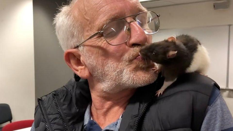 Obdachloser mit seinem Haustier