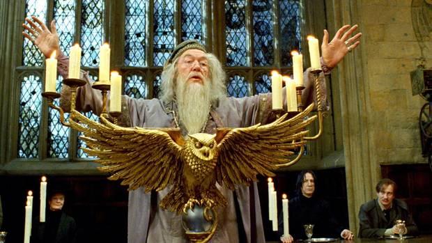 """Harry Potter""-Star: Michael Gam"