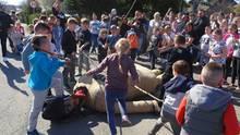 """Die auf dem Boden liegende """"Judas""""-Puppe wurde auch von Kindern mit eigens vorbereiteten langen Stöcken geschlagen"""
