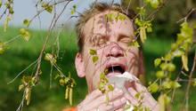 Heuschnupfen - niesen hinter einer Birke