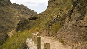 Bergiges Hinterland von Adeje, Teneriffa - Deutsche mit ihrem Sohn tot aufgefunden