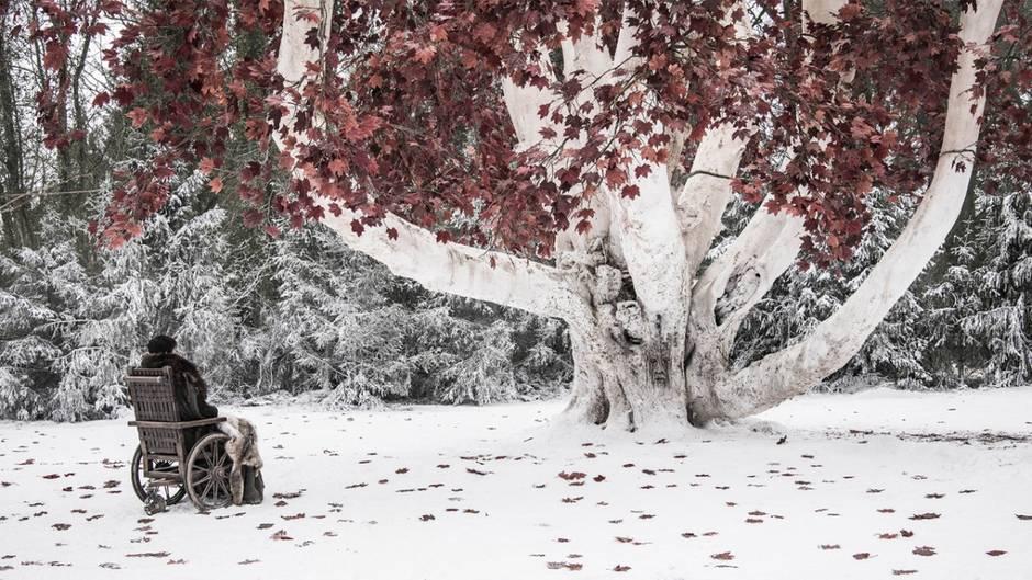"""Unter dem Wehrholzbaum will Bran Stark in der nächsten Folge """"Game of Thrones"""" auf den Nachtkönig warten"""