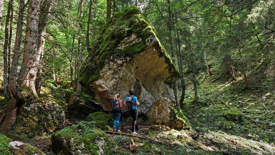 Hindernislauf: Im Gesäuse müssen Wanderer mitunter riesige Felsbrocken umkurven.