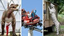 Die neun besten Freizeitparks in Deutschland