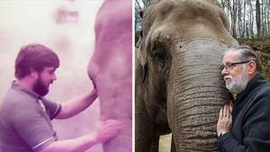 Links steht ein Mann mit braunem Haar und Vollbart neben einem Elefanten, rechts ein grauhaariger Mann mit Brille