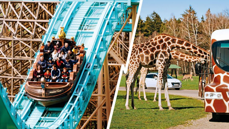 stern-Ranking: Spiel, Spaß und wilde Tiere – das sind die besten Freizeitparks in Deutschland