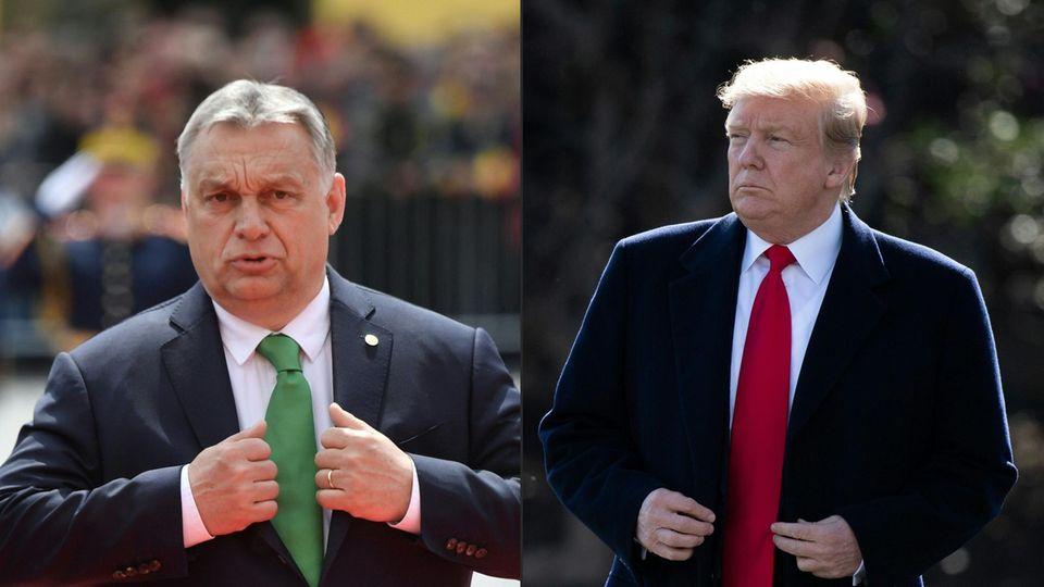 Brüder im Geiste: UngarnsMinisterpräsidentViktor Orban (l.) und US-Präsident Donald Trump (r.)