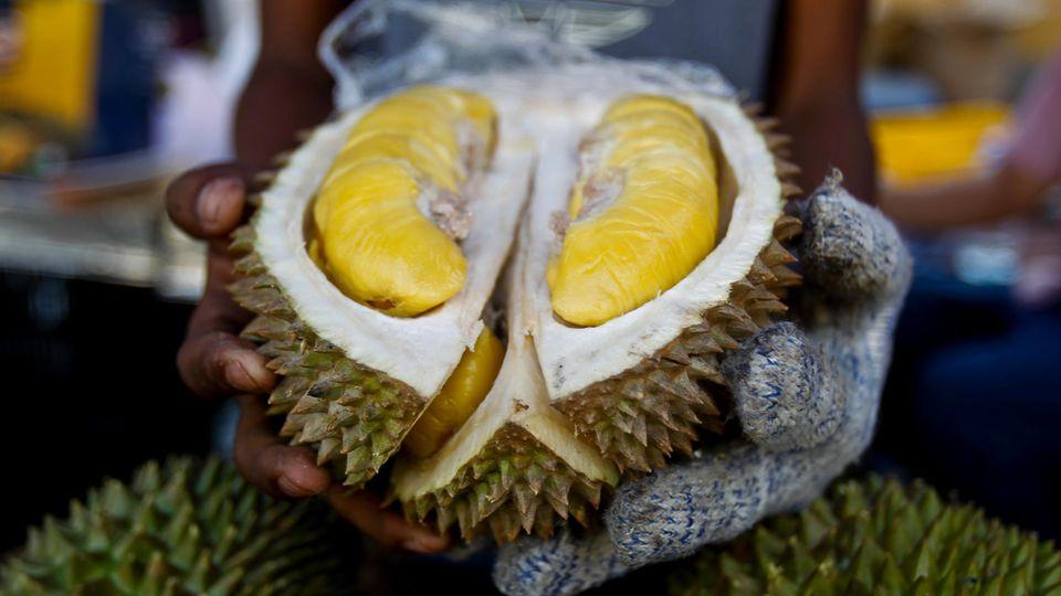 Eine Durianfrucht sorgte für die Evakurierung der Universitätsbibliothek von Canberra
