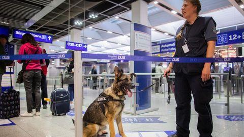 """Der Schäferhund Luke trägt ein Geschirr mit der Aufschrift """"Zoll"""". Er wird von Hundeführerin Sabine Mohre an der Leine gehalten."""