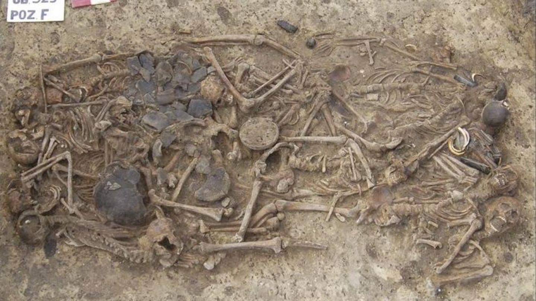 Die Überreste von 15 Menschen, die vor 5000 Jahren ermordet wurden
