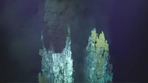 Zwei Tiefsee-Schlote auf dem Grund des Marianengraben im Pazifik: Hier wurde nun Plastikmüll entdeckt.